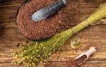Семя льна лечебные свойства при очищении