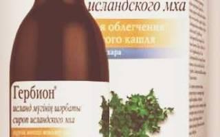 Сироп из исландского мха лечебные свойства и противопоказания
