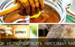 Дальневосточный липовый мед лечебные свойства