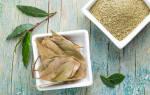 Все о лечебных свойствах лаврового листа
