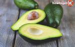 Авокадо и его лечебные свойства