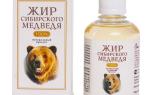 Какими лечебными свойствами обладает медвежий жир?