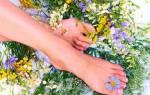 Агримония лечебные свойства при варикозе