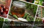 Варенье из еловых шишек лечебные свойства